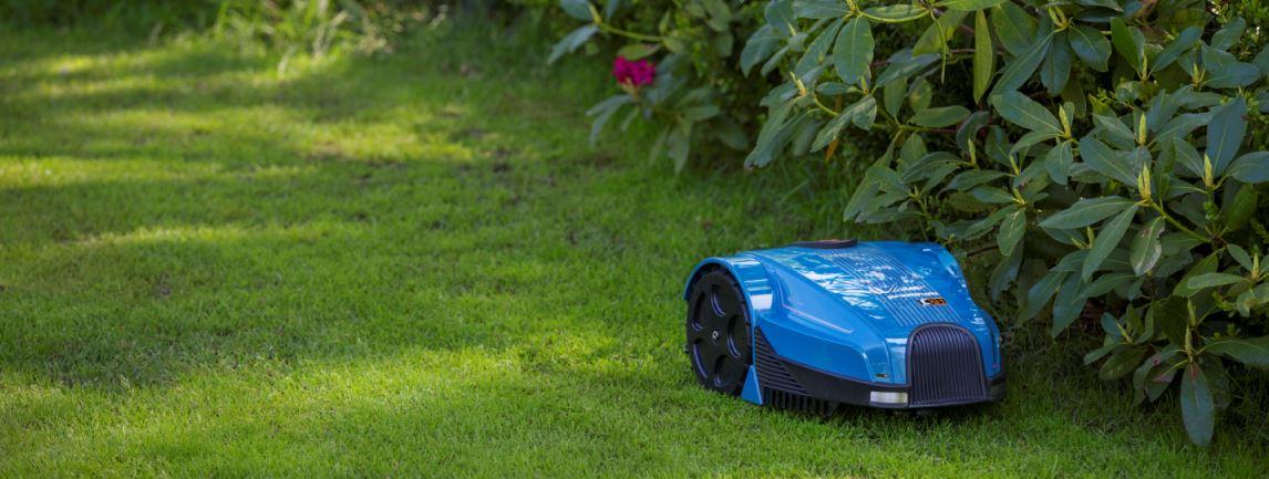 robotas pjauna veja